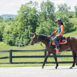 Equestrian-0171