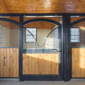 Equestrian-0416